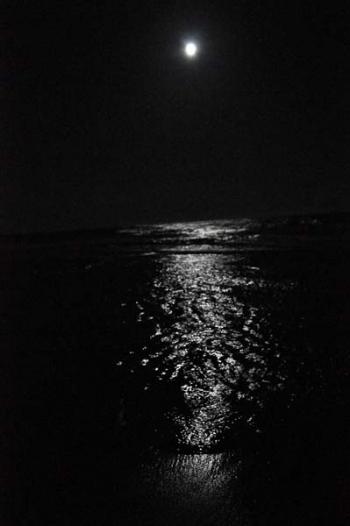 写真作品:海と月
